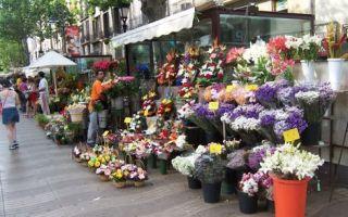 Цветочный бизнес: организация цветочного бизнеса