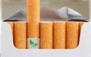 Бизнес идея: сигаретный биофильтр
