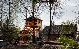 Домики на деревьях как бизнес