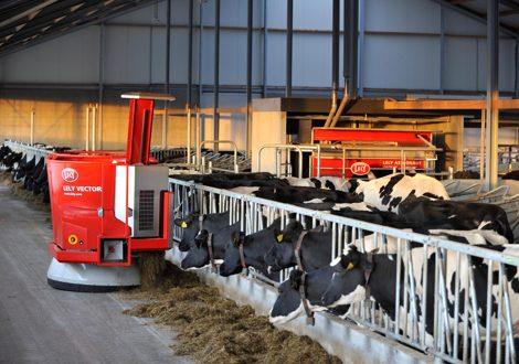 оборудование для доение коровы