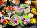 цветочный бизнес, торговля цветами