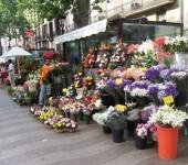 продажа цветов как бизнес